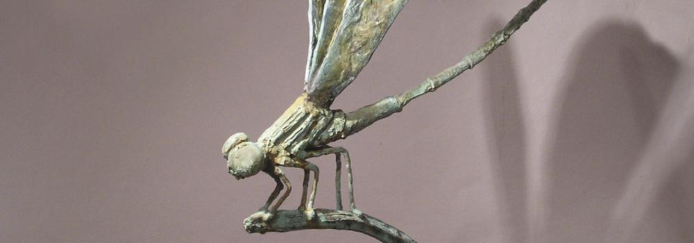 Large dami n ramis caubet   the big fly dragon