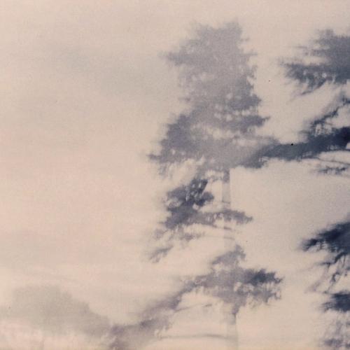 Thumb 255 au temps des arbres . ete 2004 by herve saint helier