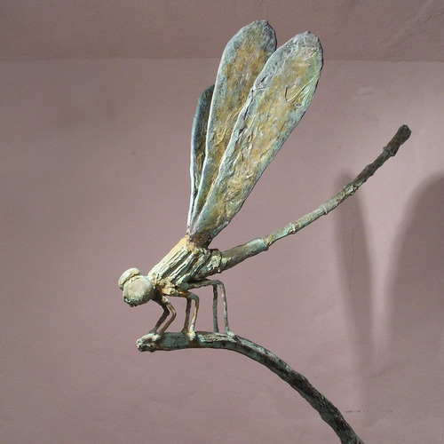 Thumb the big fly dragon  detail