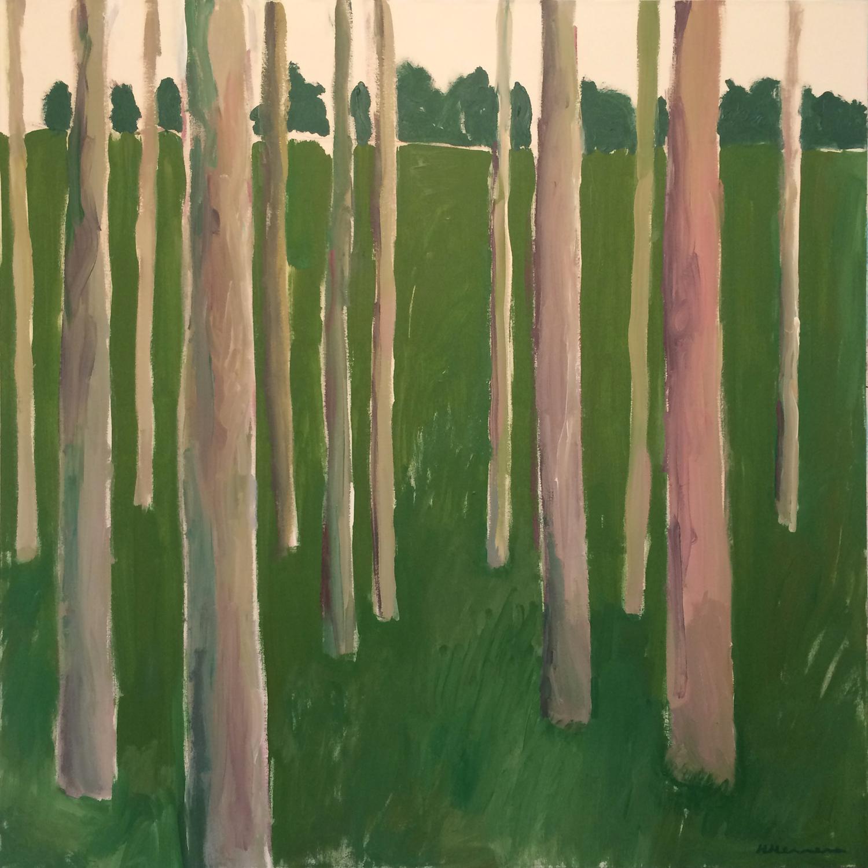 Large alberi rosa