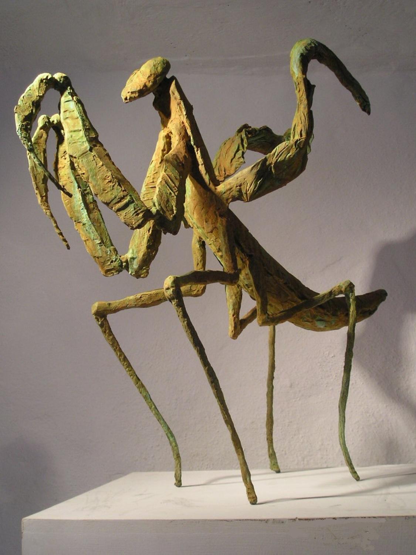 Large praying mantis