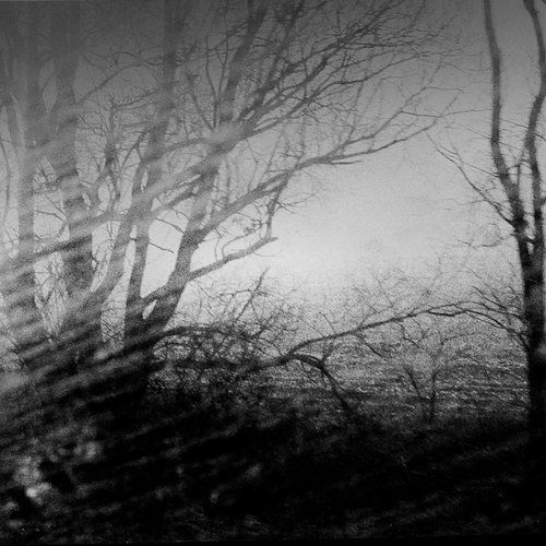 Thumb frederic bien morning mist poland 2012 trix400 02