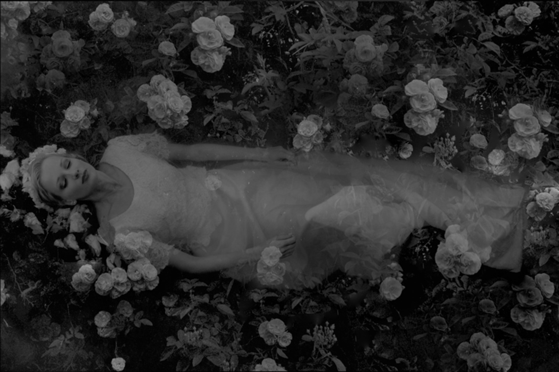 Large dreams of ophelia i