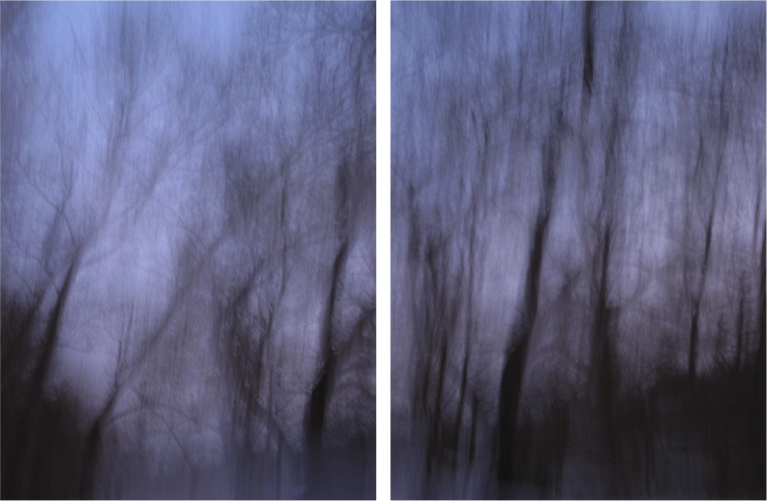 Large diptych elemental