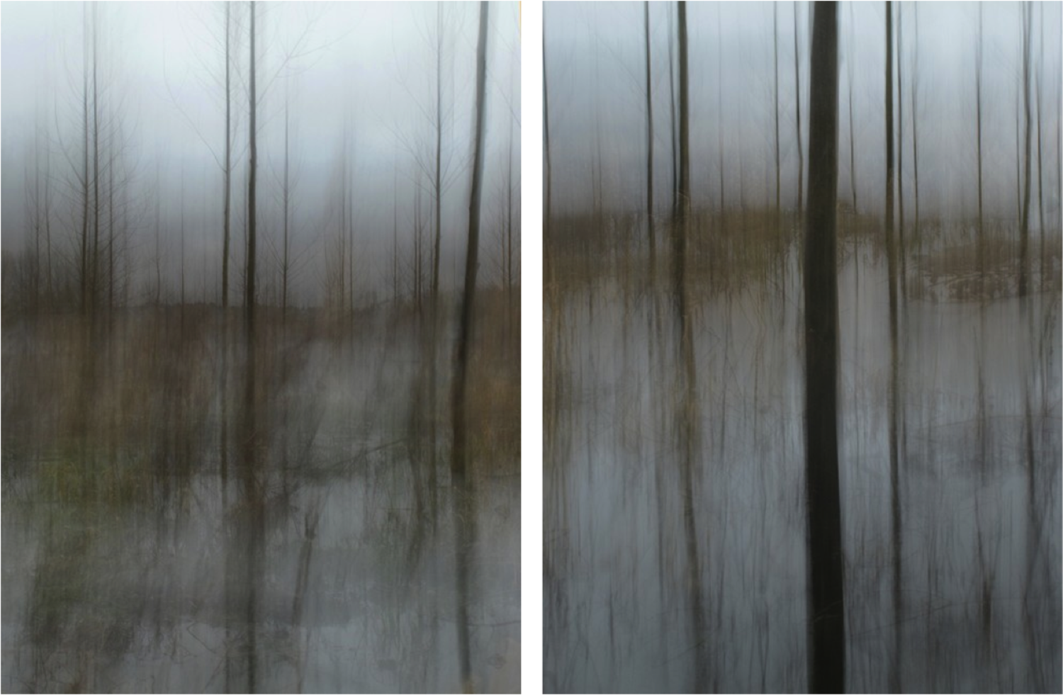 Large diptych winter