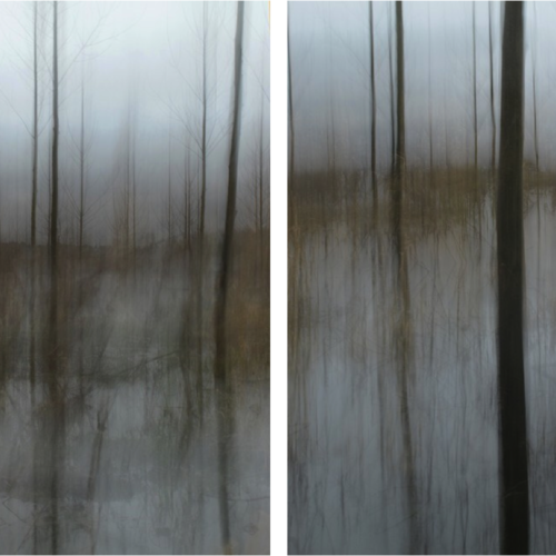 Thumb diptych winter