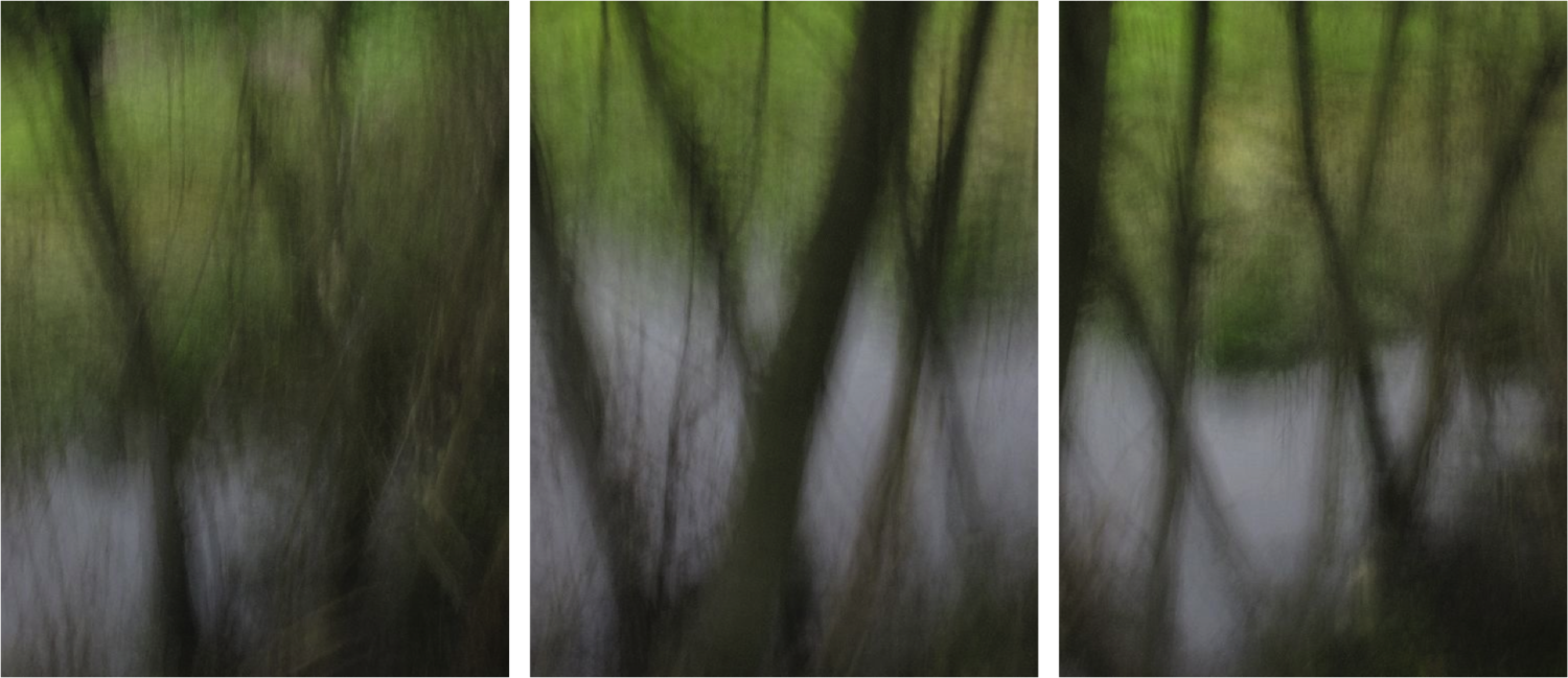 Large triptych spring