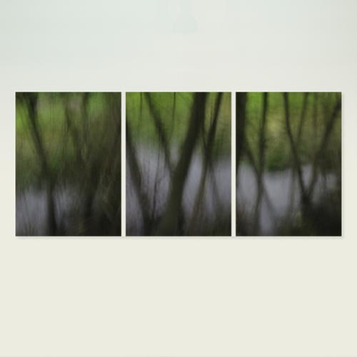 Thumb thumb triptych spring